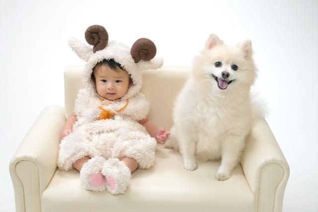 baby_394